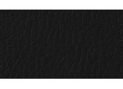 Ginkgo Anthracite